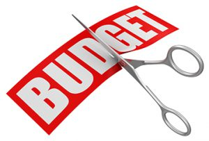 Budget Cut Graphic